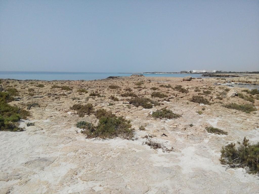 рядом с пляжем
