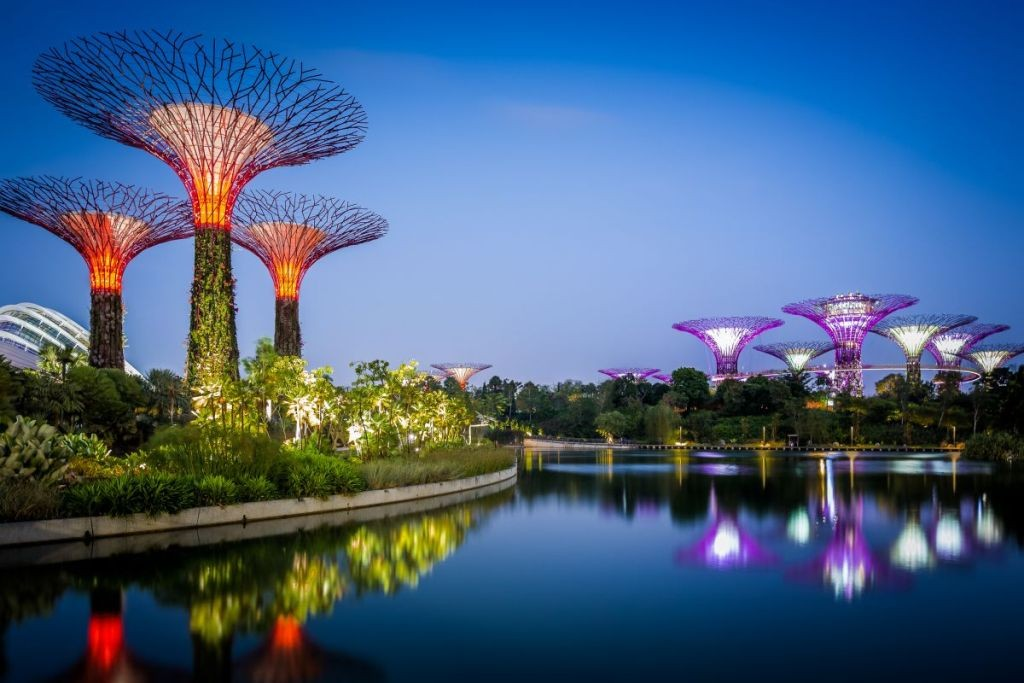 Деревья Аватара Сингапур 2