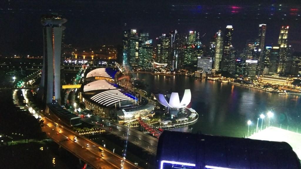 С колеса обозрения в Сингапуре 1