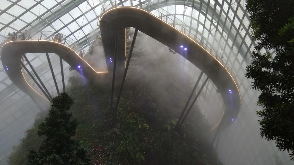 Тропический сад 1