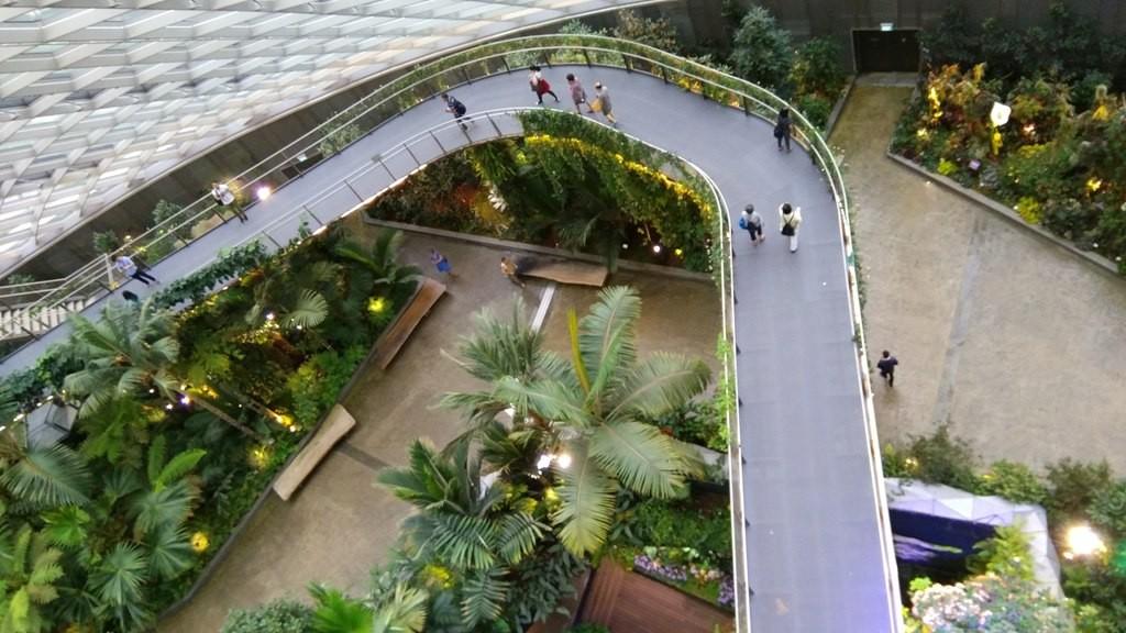 Тропический сад 3
