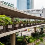 Переходы Гонконга